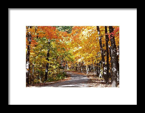 Fall Framed Print featuring the photograph Nature Drive by Kim Hymes