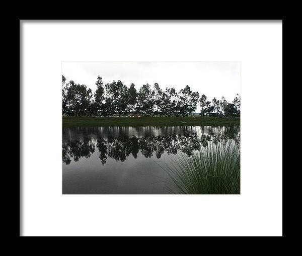 Landscape Framed Print featuring the photograph Nature by Mamunur Rashid
