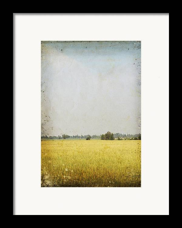 Abstract Framed Print featuring the photograph Nature Painting On Old Grunge Paper by Setsiri Silapasuwanchai