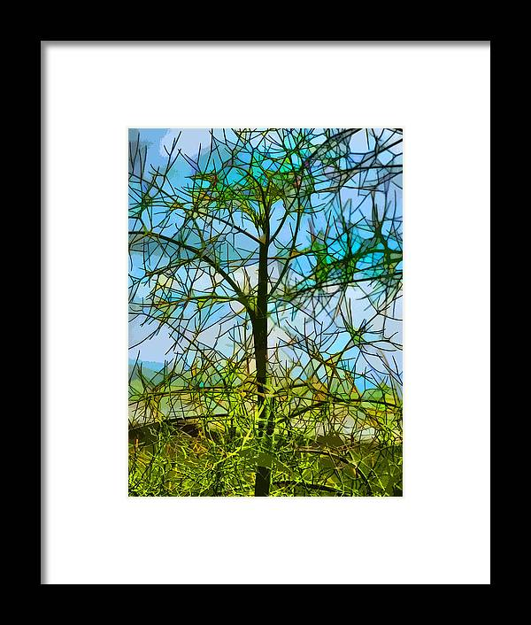 Stained Glass Framed Print featuring the photograph Nature's Church Windows by Steve Taylor
