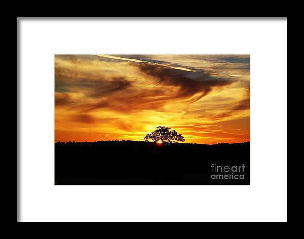 Julie Clements Framed Print featuring the photograph Nature's Last Sigh Goodnight by Julie Clements