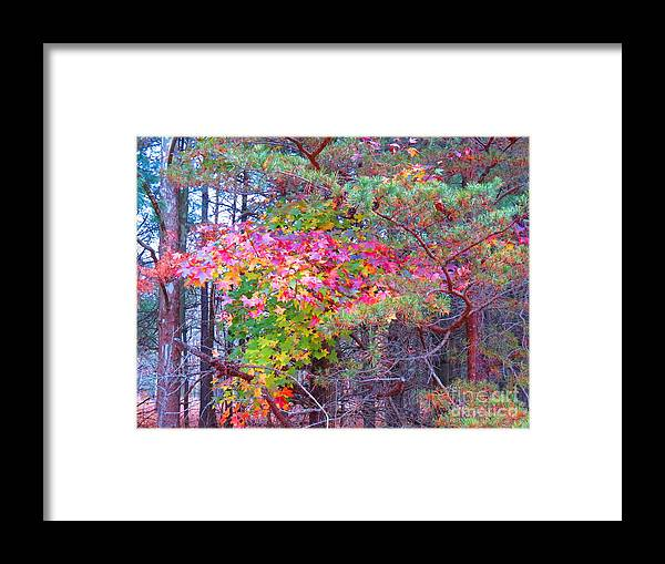 Tree Framed Print featuring the photograph Nature's Psychedelic by Rrrose Pix