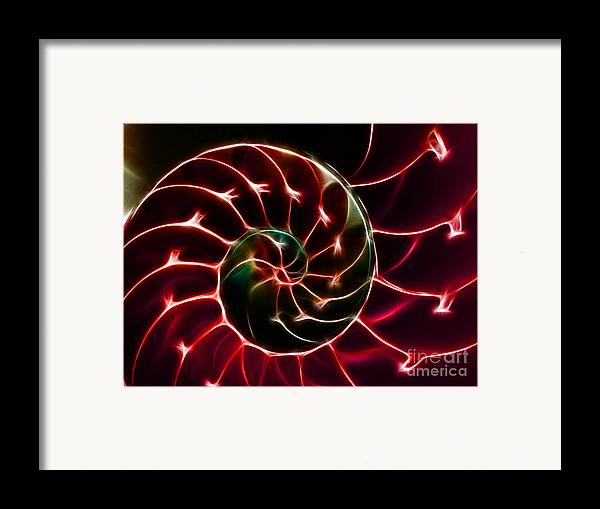 Yingyang Framed Print featuring the photograph Nautilus Shell - Electric - V2 - Red by Wingsdomain Art and Photography