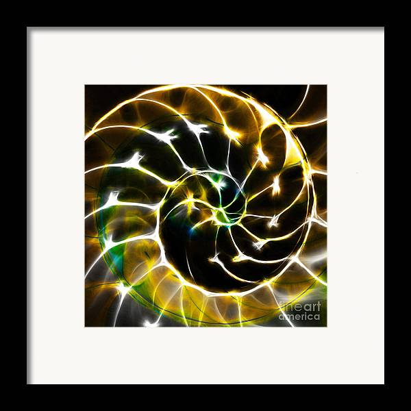 Yingyang Framed Print featuring the photograph Nautilus Shell Ying And Yang - Electric - V1 - Gold by Wingsdomain Art and Photography