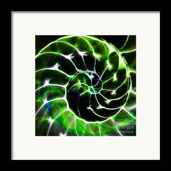 Yingyang Framed Print featuring the photograph Nautilus Shell Ying And Yang - Electric - V1 - Green by Wingsdomain Art and Photography