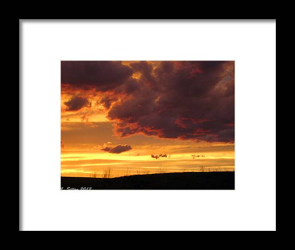 Country Photographs Framed Print featuring the photograph Neon Night by C Sitton