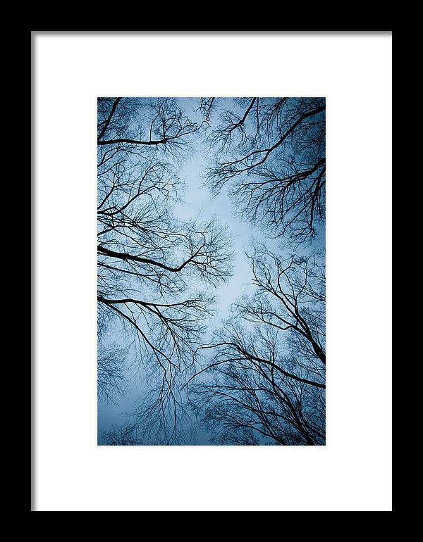 Abstract Framed Print featuring the photograph Neural Network by Heidi Reyher