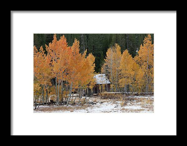 Northstar Framed Print featuring the photograph Northstar Aspens by Tony and Kristi Middleton