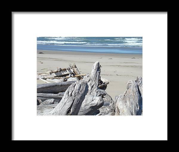 Driftwood Framed Print featuring the photograph Ocean Beach Driftwood Art Prints Coastal Shore by Baslee Troutman