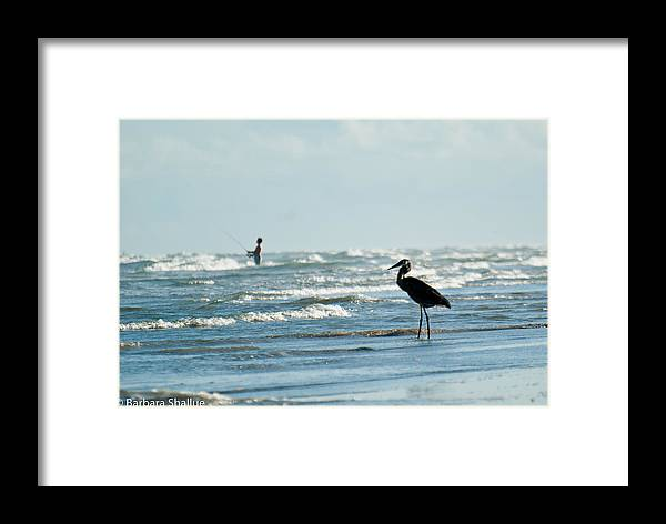 Fishing Framed Print featuring the photograph Of Like Mind by Barbara Shallue