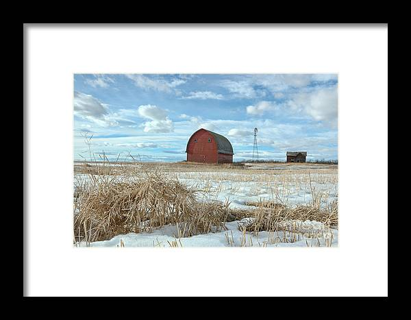 Country Framed Print featuring the photograph Old And New by Brian Ewing