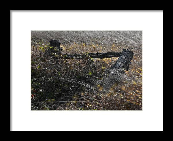 Autumn Framed Print featuring the photograph Old Fence by Craig Brown