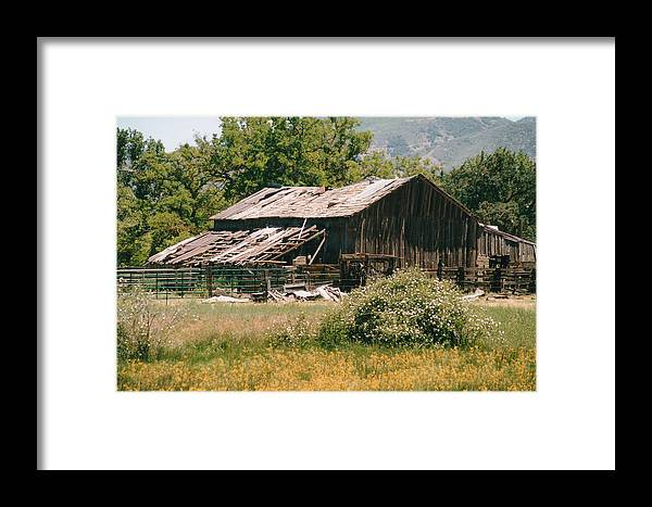 Barn Framed Print featuring the photograph Old Saisia Barn In Spring by Mel White Photo