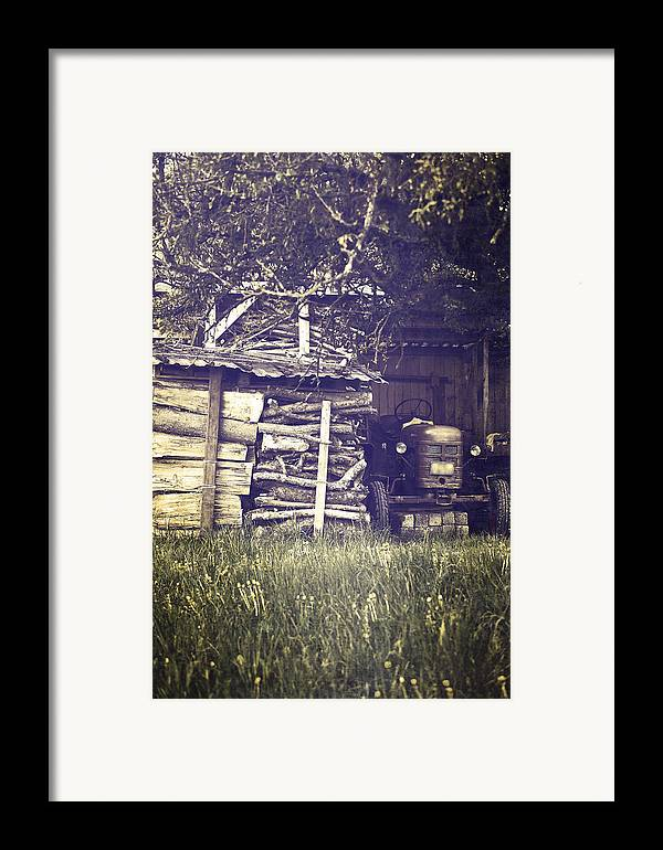 Tree Framed Print featuring the photograph Old Shed by Joana Kruse