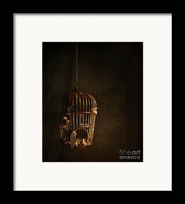 Atmospheric Framed Print featuring the photograph Old Wooden Bird Cage With Feathers by Sandra Cunningham