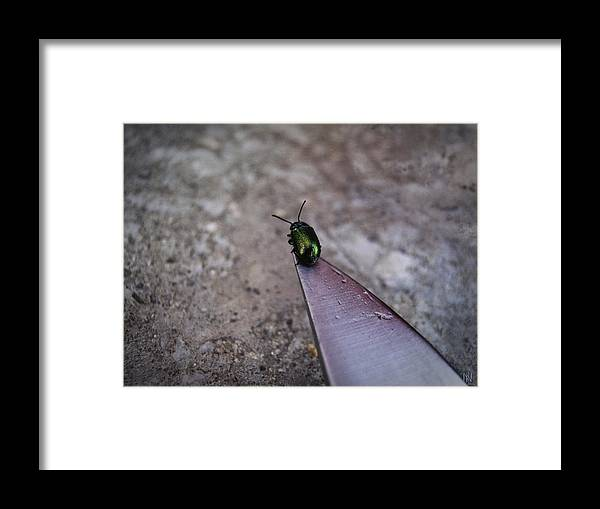 On A Razor's Edge Framed Print featuring the photograph On A Knife Edge by Nafets Nuarb