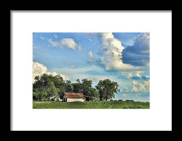 Landscapes Framed Print featuring the photograph On Stage Coach Road by Jan Amiss Photography
