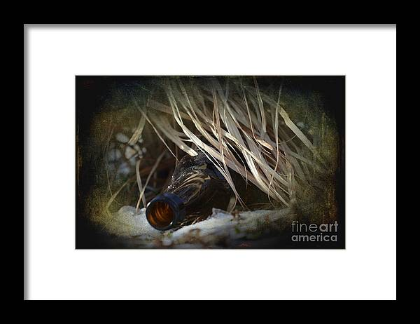 Bottle Framed Print featuring the photograph One For The Road by The Stone Age