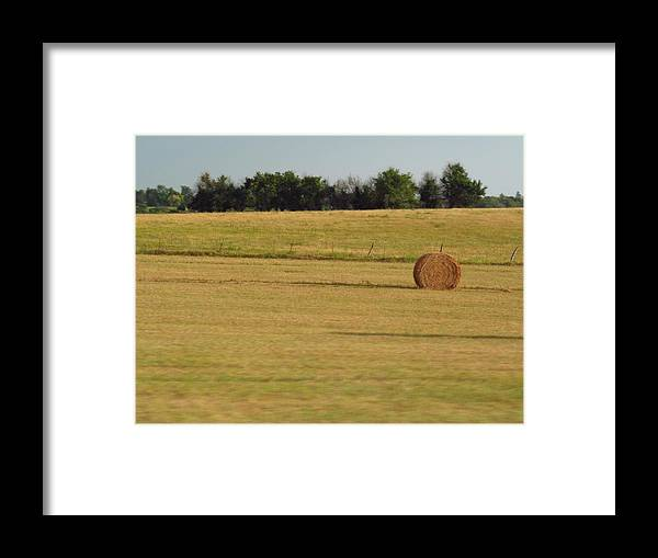Landscapes Framed Print featuring the photograph Only One by Aaron Moore