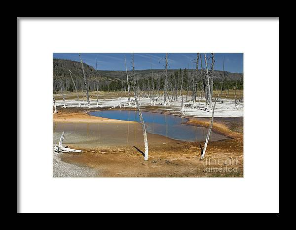 Bronstein Framed Print featuring the photograph Opalescent Pool Of Yellowstone by Sandra Bronstein