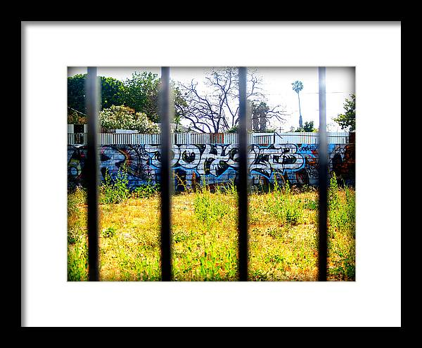 Libra.love.freedom Framed Print featuring the photograph Options by D Wash