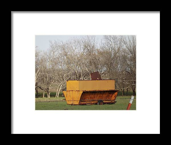 Feeder Framed Print featuring the photograph Orange Feeder by Shannon Bever