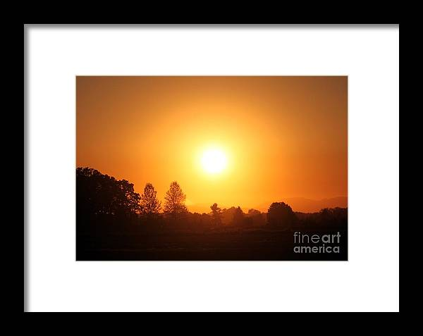 Sun Framed Print featuring the photograph Orange Glow by Erica Hanel