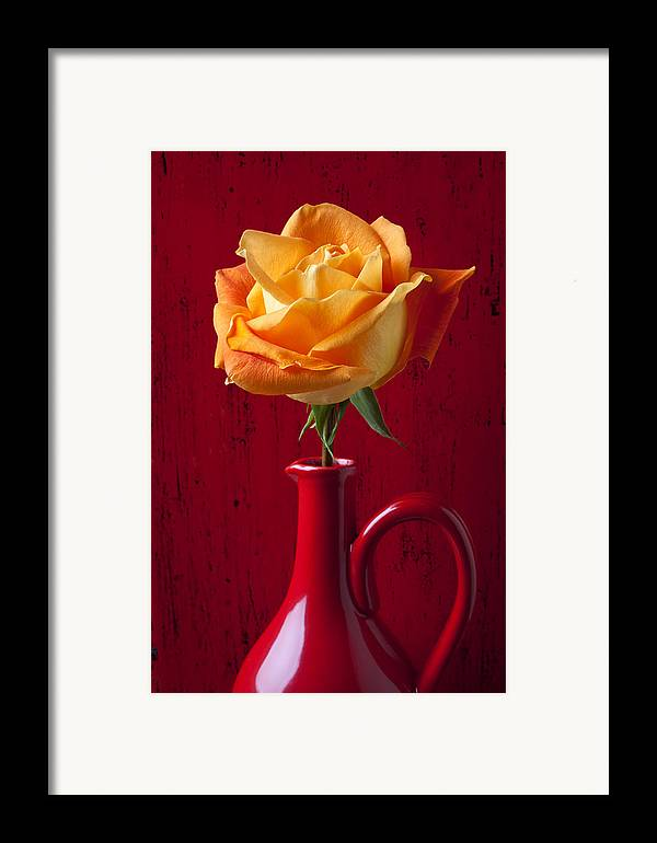 Orange Framed Print featuring the photograph Orange Rose In Red Pitcher by Garry Gay