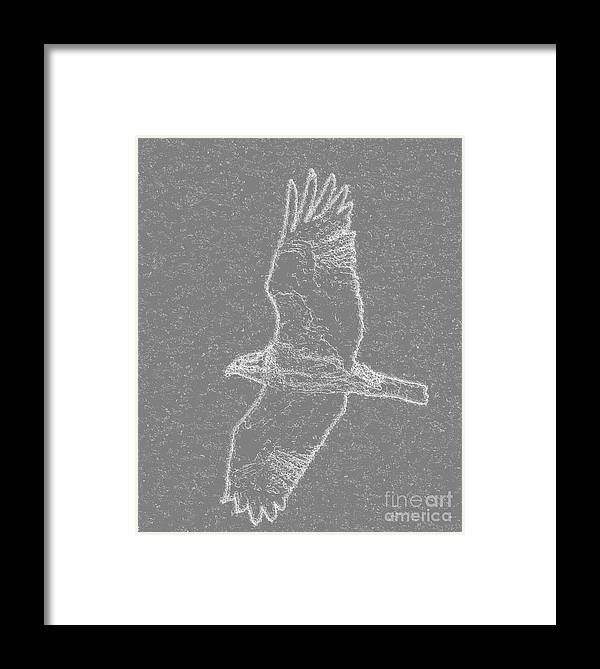Osprey Framed Print featuring the digital art Osprey In Flight Embossed by Rrrose Pix