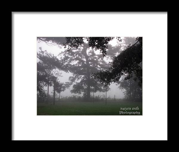 Nature Framed Print featuring the photograph out of the Mist by Marjorie Smith