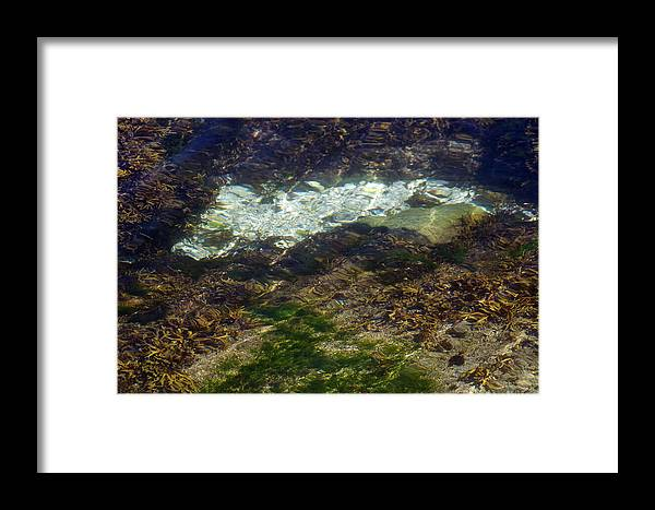 Ripples Framed Print featuring the photograph Pacific Calm 2 by David Kleinsasser