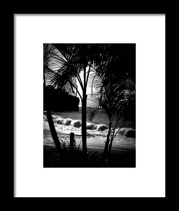 Palm Framed Print featuring the photograph Palm Tree Silouette by Kimberly Perry