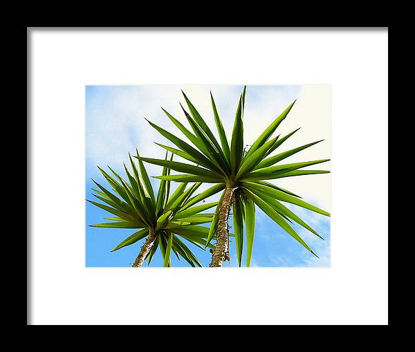 Blue Framed Print featuring the photograph Palm Trees by Design Windmill