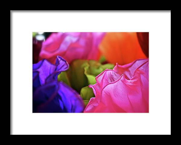 Framed Print featuring the photograph Mexico by Lori Leigh