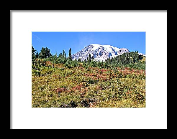 Mt. Framed Print featuring the photograph Paradise In Fall On Mt. Rainier 2 by Rob Green