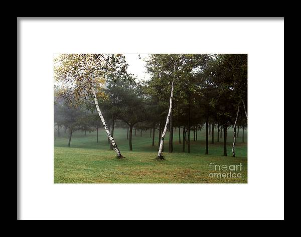 Landscape Framed Print featuring the photograph Parc Dessureault by Andre Paquin