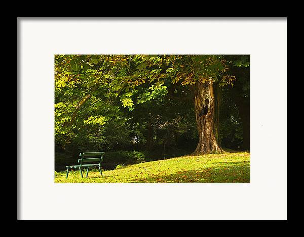 Bench Framed Print featuring the photograph Park Bench Beside The Owenriff River In by Trish Punch