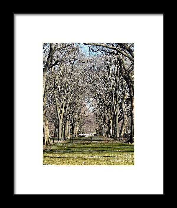 Framed Print featuring the photograph Parks And Rec. by Sean Abbott