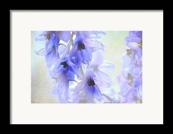 Flowers Framed Print featuring the photograph Passion For Flowers. Blue Dreams by Jenny Rainbow