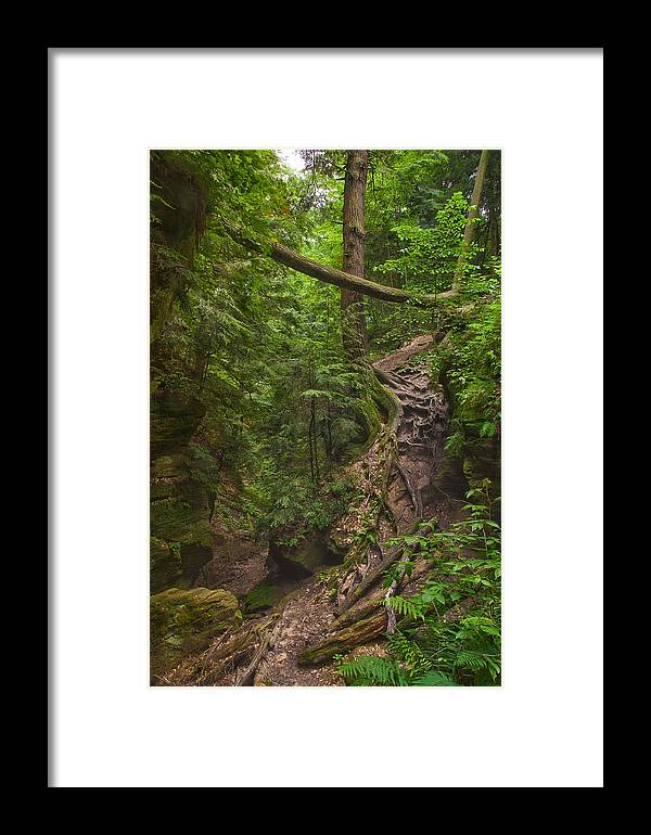 Mohican Framed Print featuring the photograph Path Less Traveled by Brian Mollenkopf