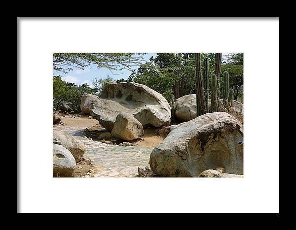 Travel Framed Print featuring the photograph Paved Desert Walk by Linda Phelps