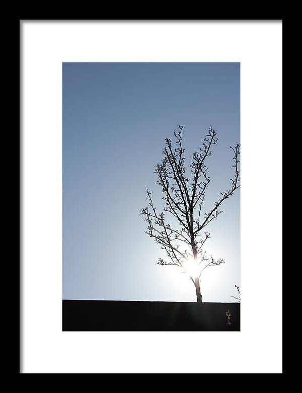 Light Framed Print featuring the photograph Peaceful Moment by Jennifer Westlake