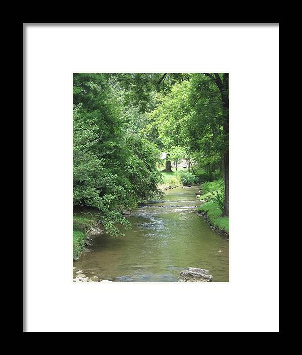 Stream Framed Print featuring the photograph Peaceful Mountain Stream by Megan Cohen