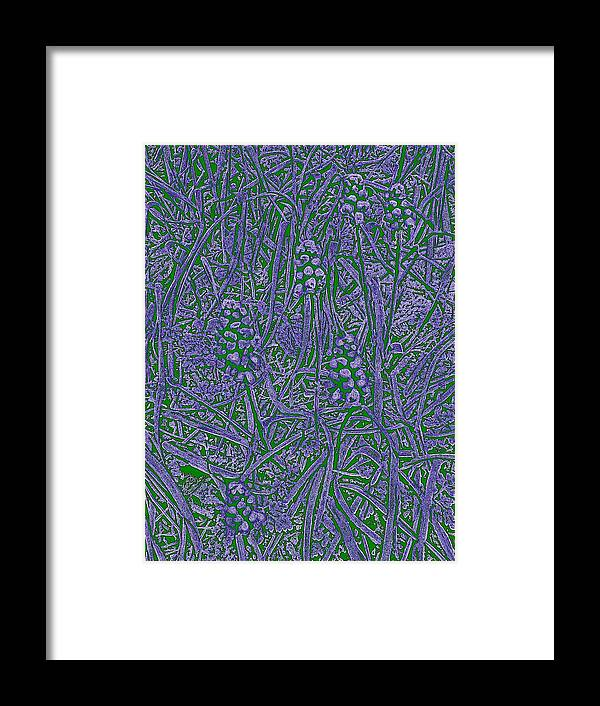 Grass Framed Print featuring the digital art Pearls In The Grass 3 by Tim Allen