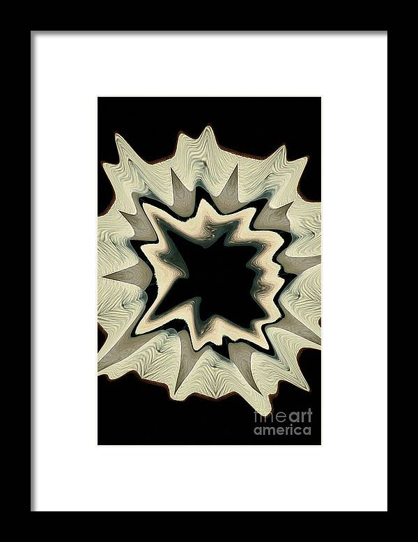 Kaleidoscope Framed Print featuring the photograph Pelican1 by Mark Gilman