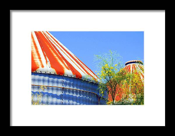 Landscape Framed Print featuring the photograph Perseverence by Melanie D Cervantes