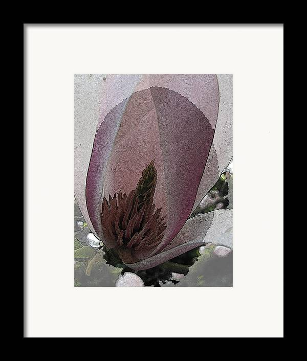 Petal Framed Print featuring the digital art Petal Prose by Tim Allen