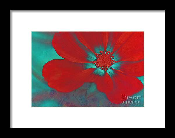 Red Framed Print featuring the photograph Petaline - T23b2 by Variance Collections