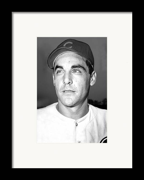 1940s Framed Print featuring the photograph Phil Cavarretta, Lefty First Baseman by Everett