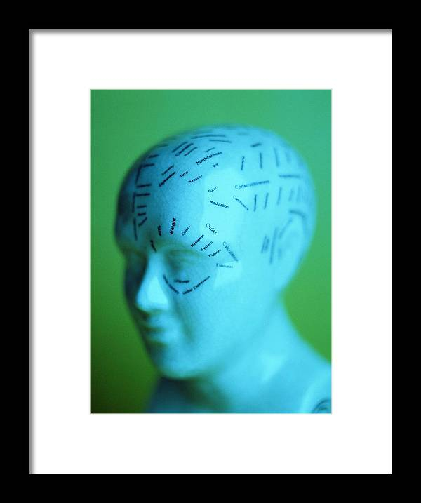 Bump Framed Print featuring the photograph Phrenology Model by Lawrence Lawry